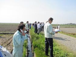 製品の圃場試験と見学者